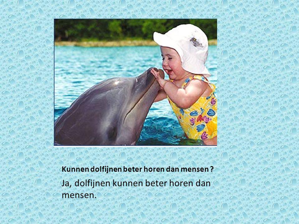Kunnen dolfijnen beter horen dan mensen