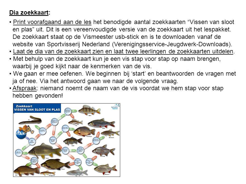 Dia zoekkaart: Print voorafgaand aan de les het benodigde aantal zoekkaarten Vissen van sloot.