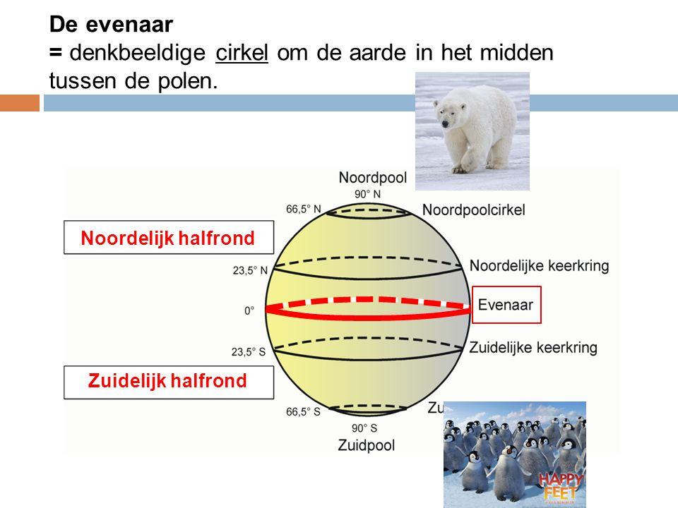 De evenaar = denkbeeldige cirkel om de aarde in het midden tussen de polen.