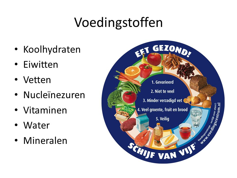 Voedingstoffen Koolhydraten Eiwitten Vetten Nucleïnezuren Vitaminen
