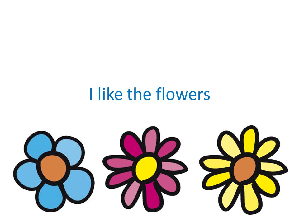 I like the flowers