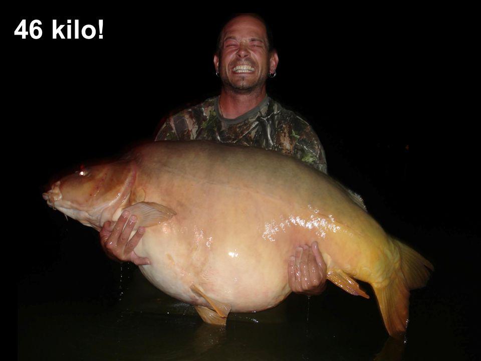 46 kilo!