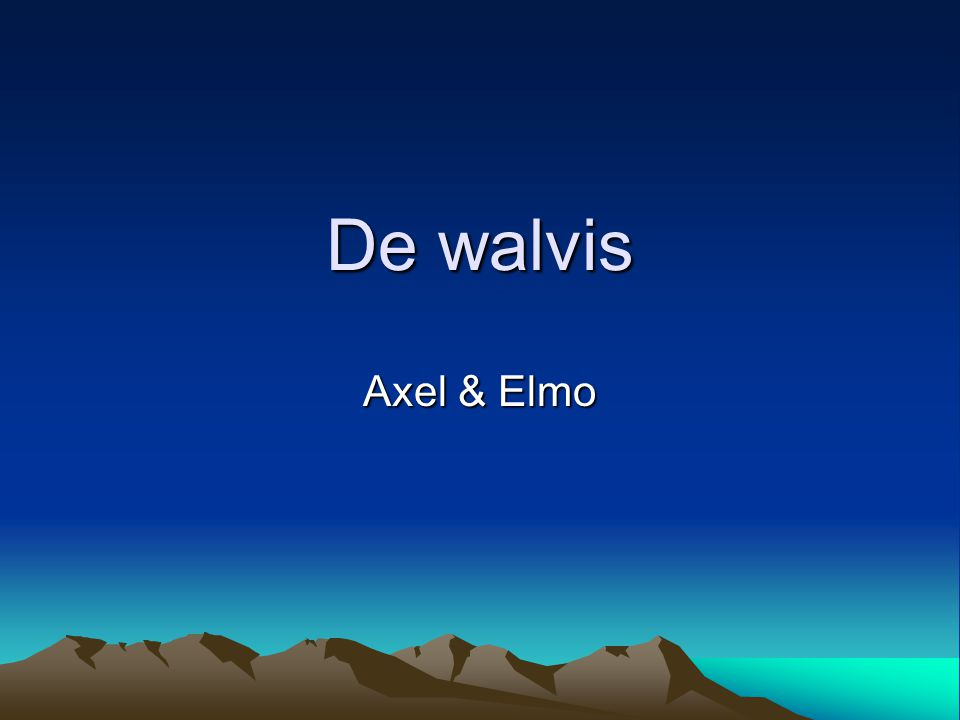 De walvis Axel & Elmo