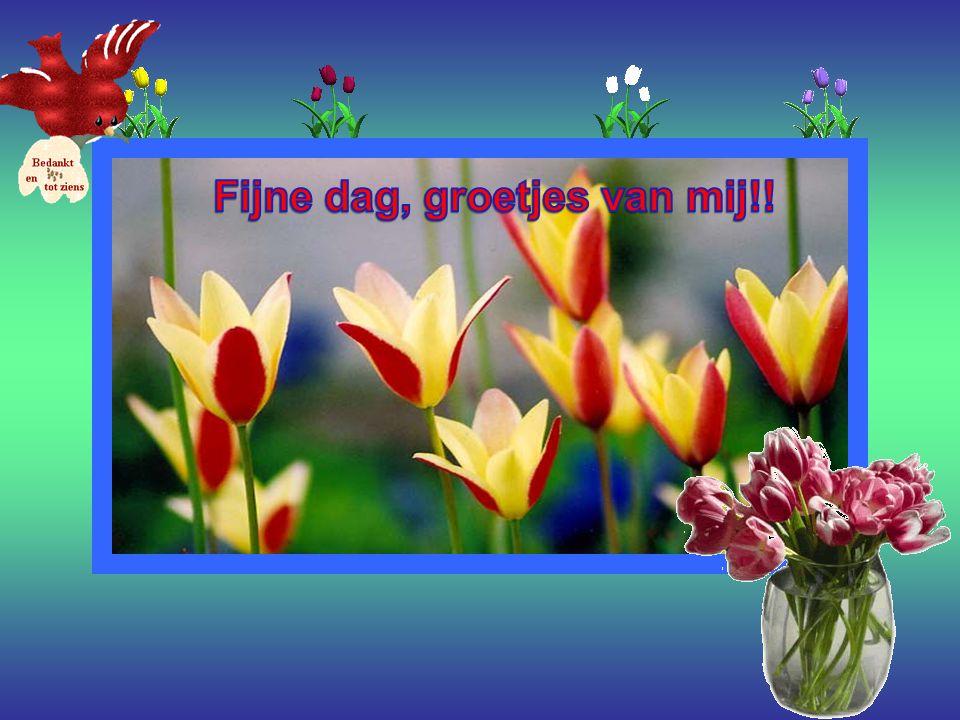 Fijne dag, groetjes van mij!!