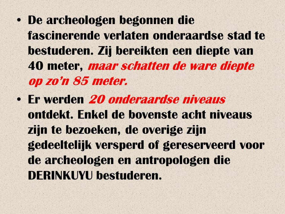 De archeologen begonnen die fascinerende verlaten onderaardse stad te bestuderen. Zij bereikten een diepte van 40 meter, maar schatten de ware diepte op zo'n 85 meter.