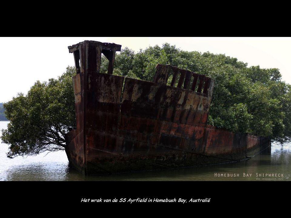 Het wrak van de SS Ayrfield in Homebush Bay, Australië