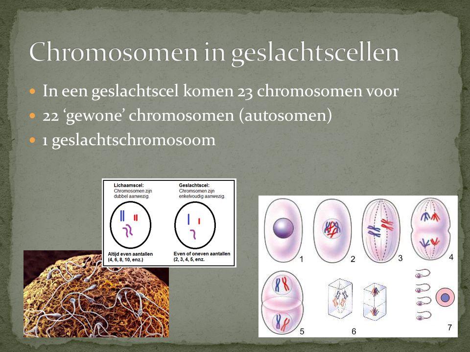 Chromosomen in geslachtscellen