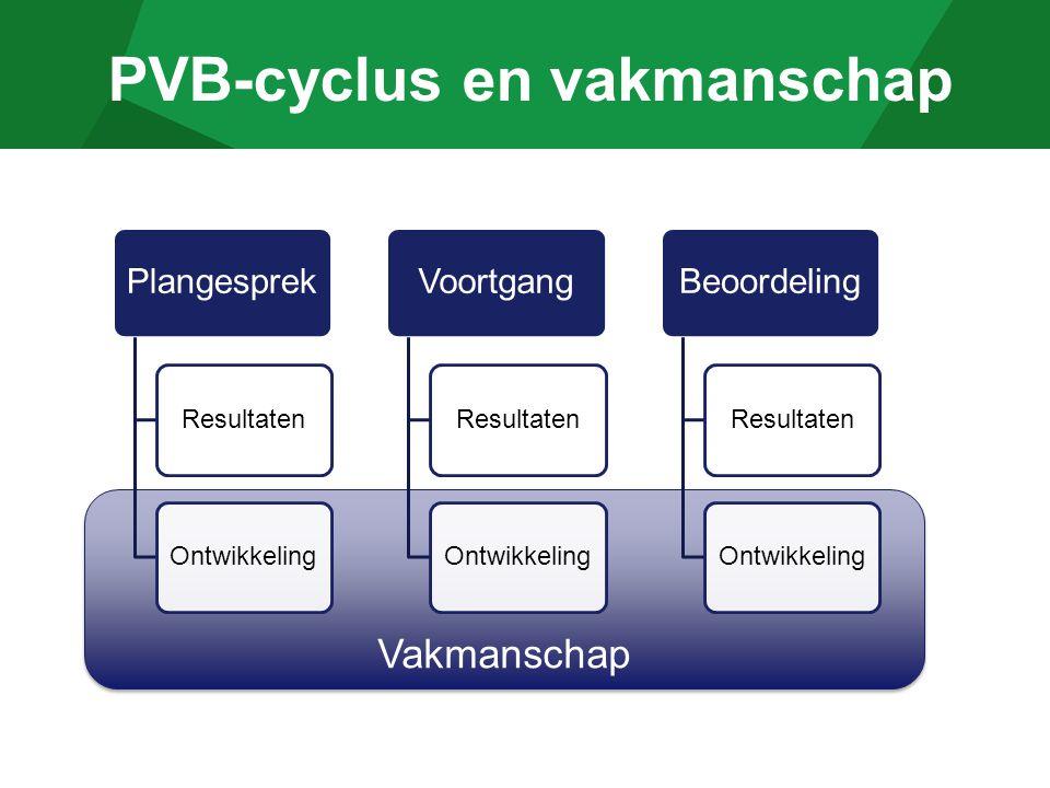 PVB-cyclus en vakmanschap