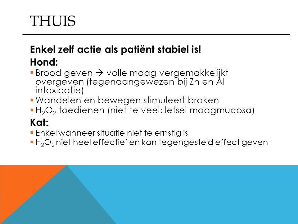 THUIS Enkel zelf actie als patiënt stabiel is! Hond: Kat: