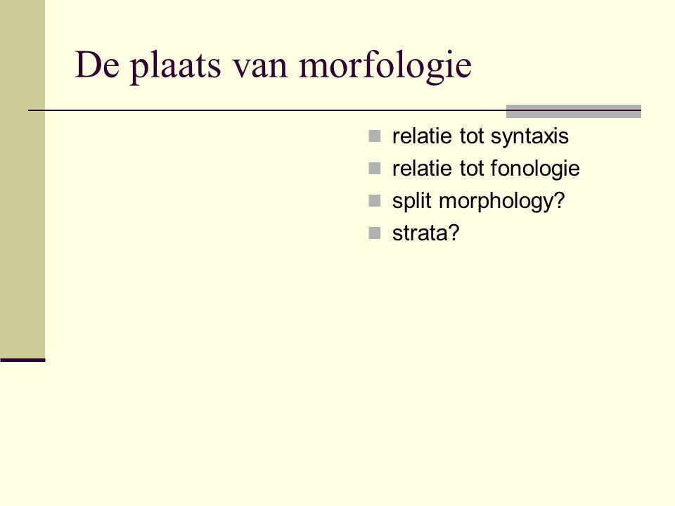 De plaats van morfologie