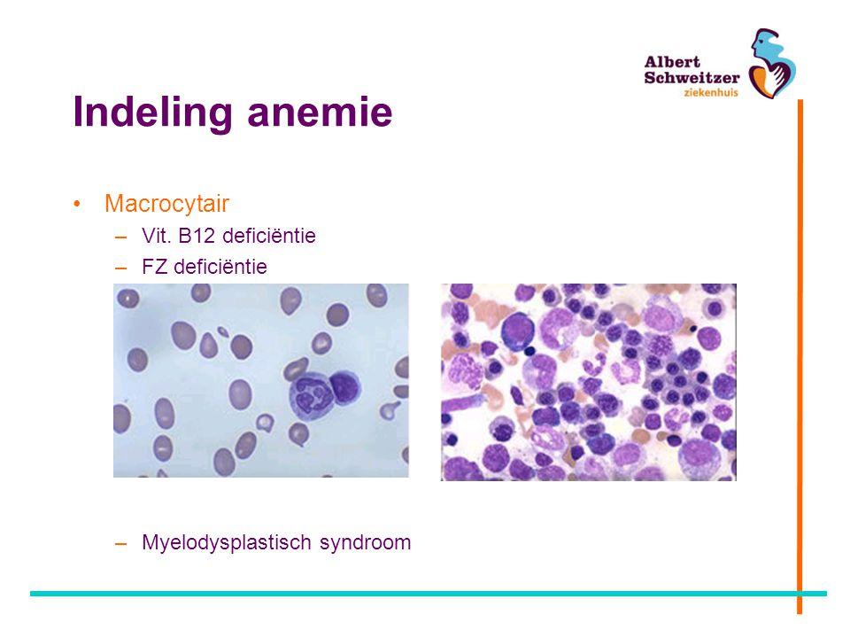 Indeling anemie Macrocytair Vit. B12 deficiëntie FZ deficiëntie