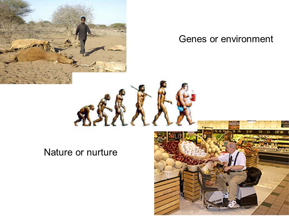 Genes or environment Nature or nurture