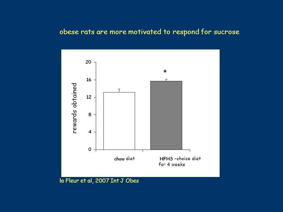 * obese rats are more motivated to respond for sucrose