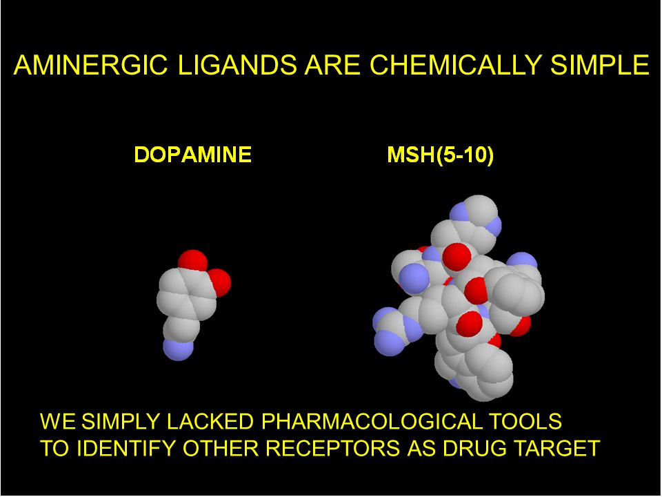 AMINERGIC LIGANDS ARE CHEMICALLY SIMPLE