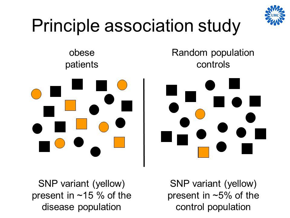 Principle association study