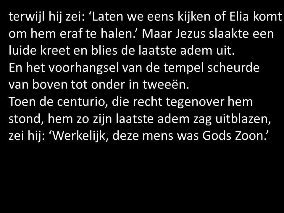 terwijl hij zei: 'Laten we eens kijken of Elia komt om hem eraf te halen.' Maar Jezus slaakte een luide kreet en blies de laatste adem uit.