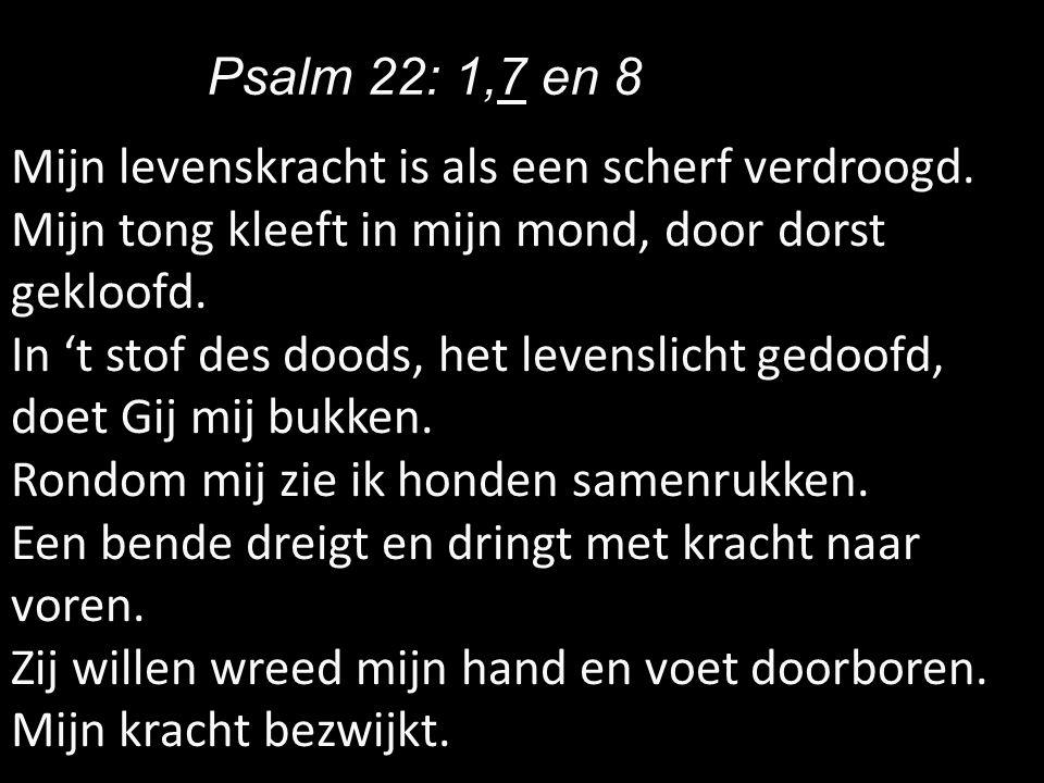 Psalm 22: 1,7 en 8 Mijn levenskracht is als een scherf verdroogd. Mijn tong kleeft in mijn mond, door dorst gekloofd.