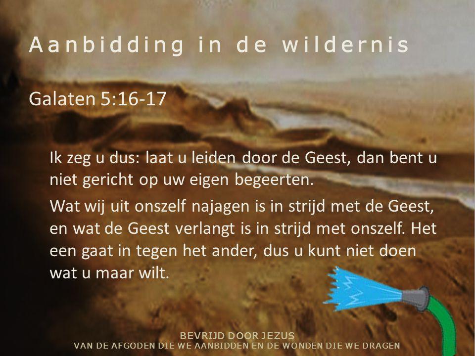 Aanbidding in de wildernis