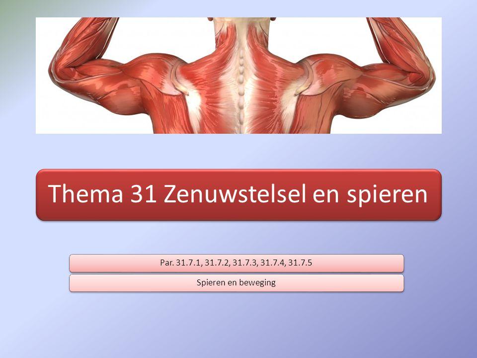 Thema 31 Zenuwstelsel en spieren