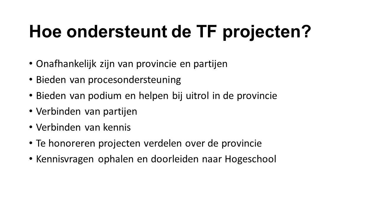 Hoe ondersteunt de TF projecten