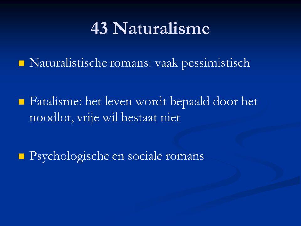 43 Naturalisme Naturalistische romans: vaak pessimistisch