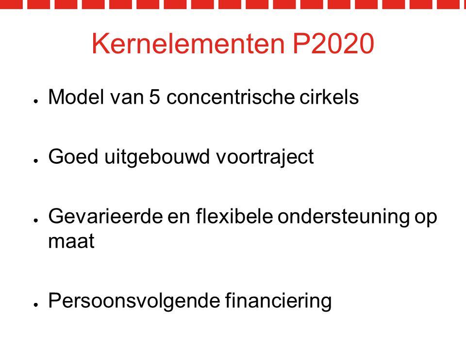 Kernelementen P2020 Model van 5 concentrische cirkels