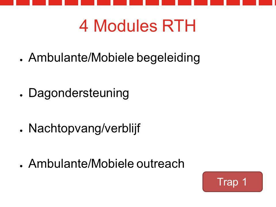 4 Modules RTH Ambulante/Mobiele begeleiding Dagondersteuning