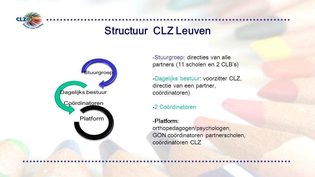 Structuur CLZ Leuven Stuurgroep Dagelijks bestuur Coördinatoren