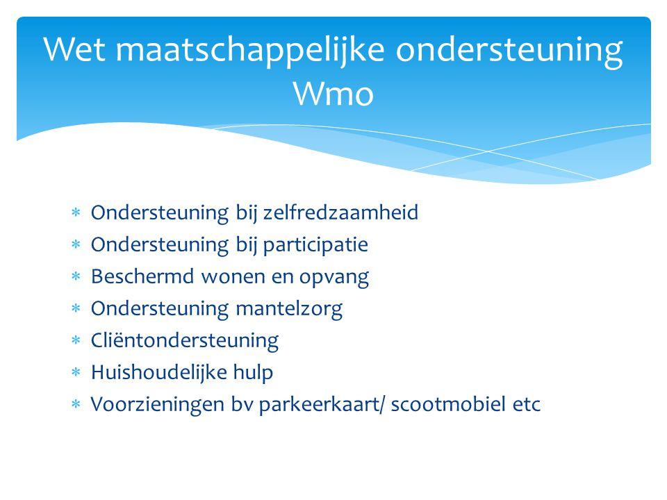 Wet maatschappelijke ondersteuning Wmo