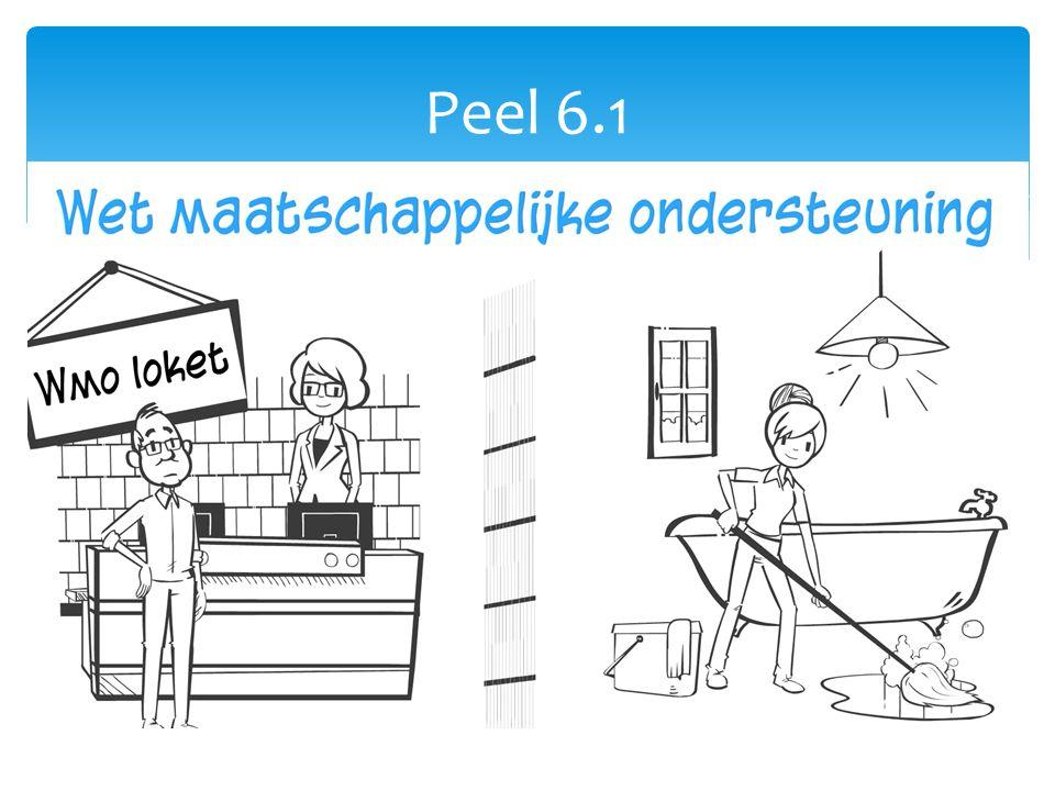 Peel 6.1