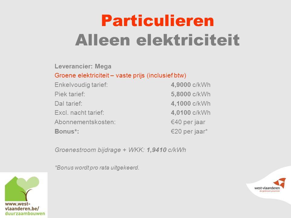 Particulieren Alleen elektriciteit