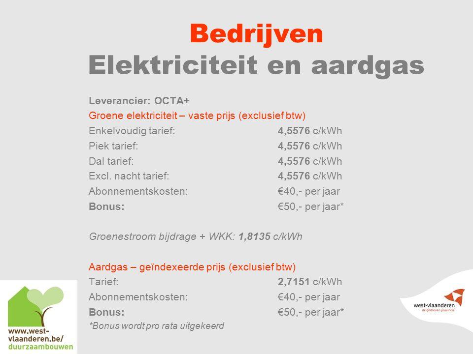 Bedrijven Elektriciteit en aardgas
