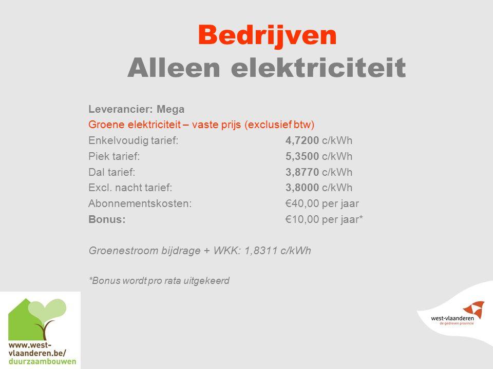 Bedrijven Alleen elektriciteit