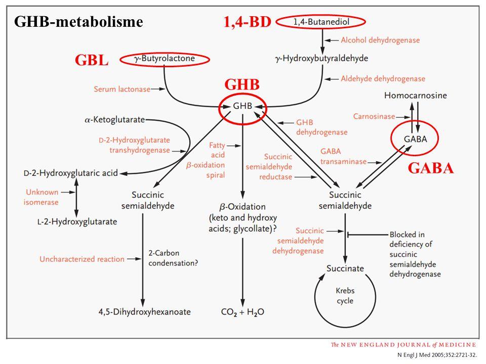 GHB-metabolisme 1,4-BD GBL GHB GABA