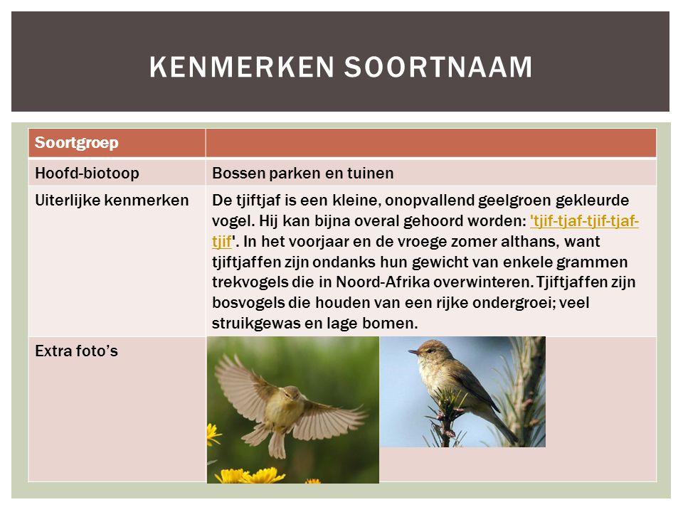 Kenmerken soortnaam Soortgroep Hoofd-biotoop Bossen parken en tuinen