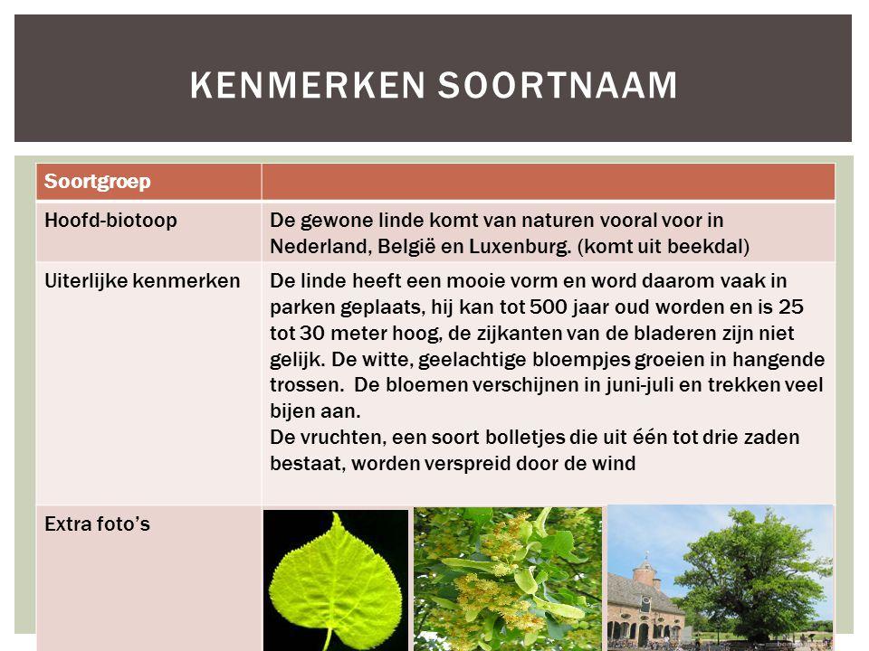 Kenmerken soortnaam Soortgroep Hoofd-biotoop