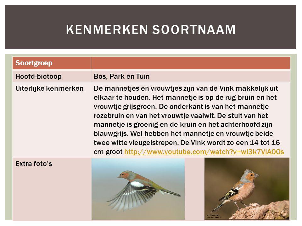 Kenmerken soortnaam Soortgroep Hoofd-biotoop Bos, Park en Tuin