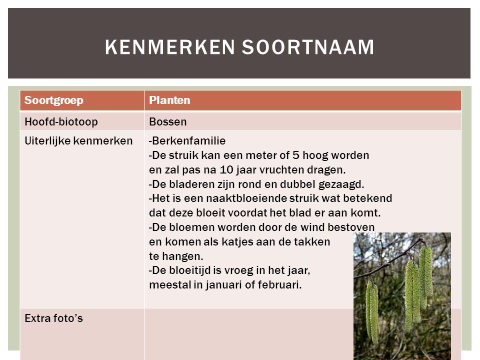 Kenmerken soortnaam Soortgroep Planten Hoofd-biotoop Bossen