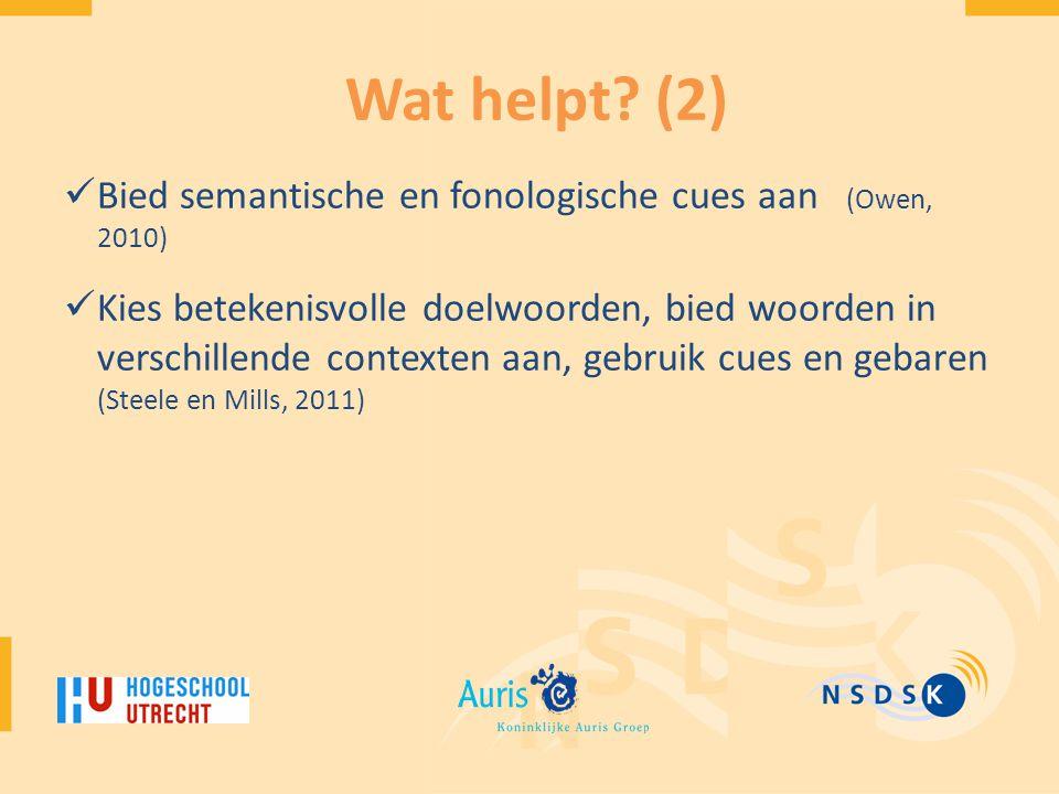Wat helpt (2) Bied semantische en fonologische cues aan (Owen, 2010)