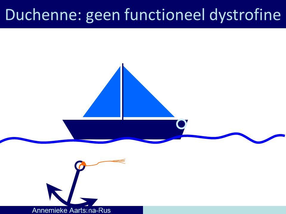 Duchenne: geen functioneel dystrofine