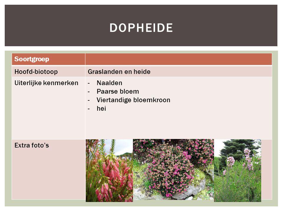 dopheide Soortgroep Hoofd-biotoop Graslanden en heide