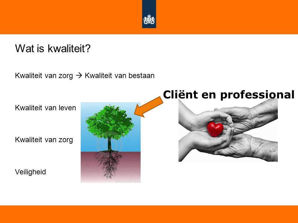 Cliënt en professional