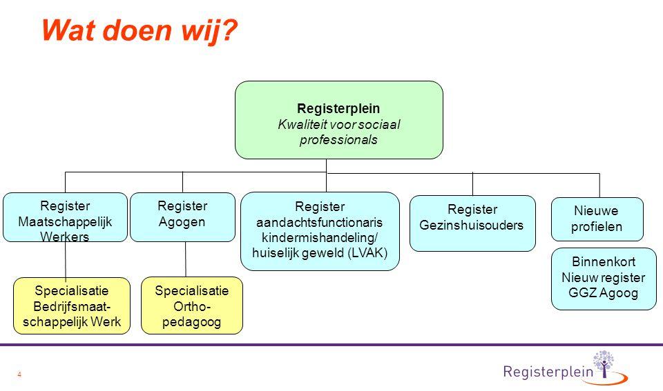 Wat doen wij Registerplein Kwaliteit voor sociaal professionals