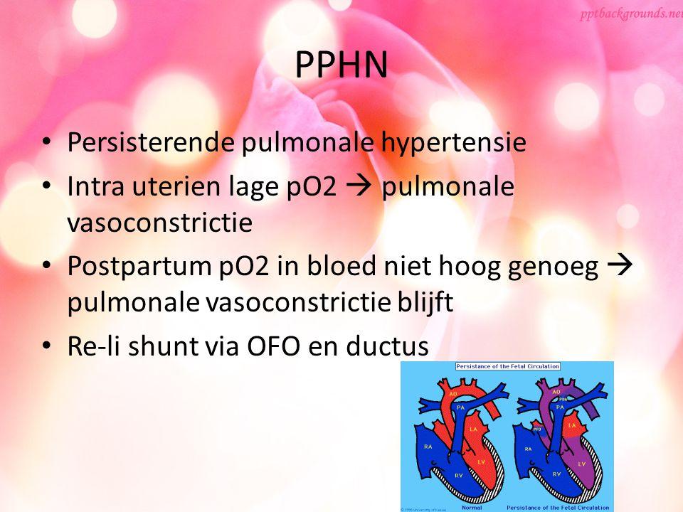 PPHN Persisterende pulmonale hypertensie