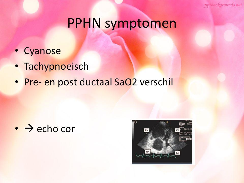 PPHN symptomen Cyanose Tachypnoeisch