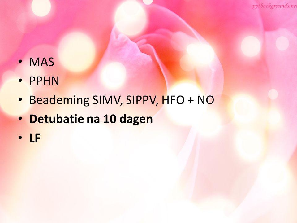 MAS PPHN Beademing SIMV, SIPPV, HFO + NO Detubatie na 10 dagen LF