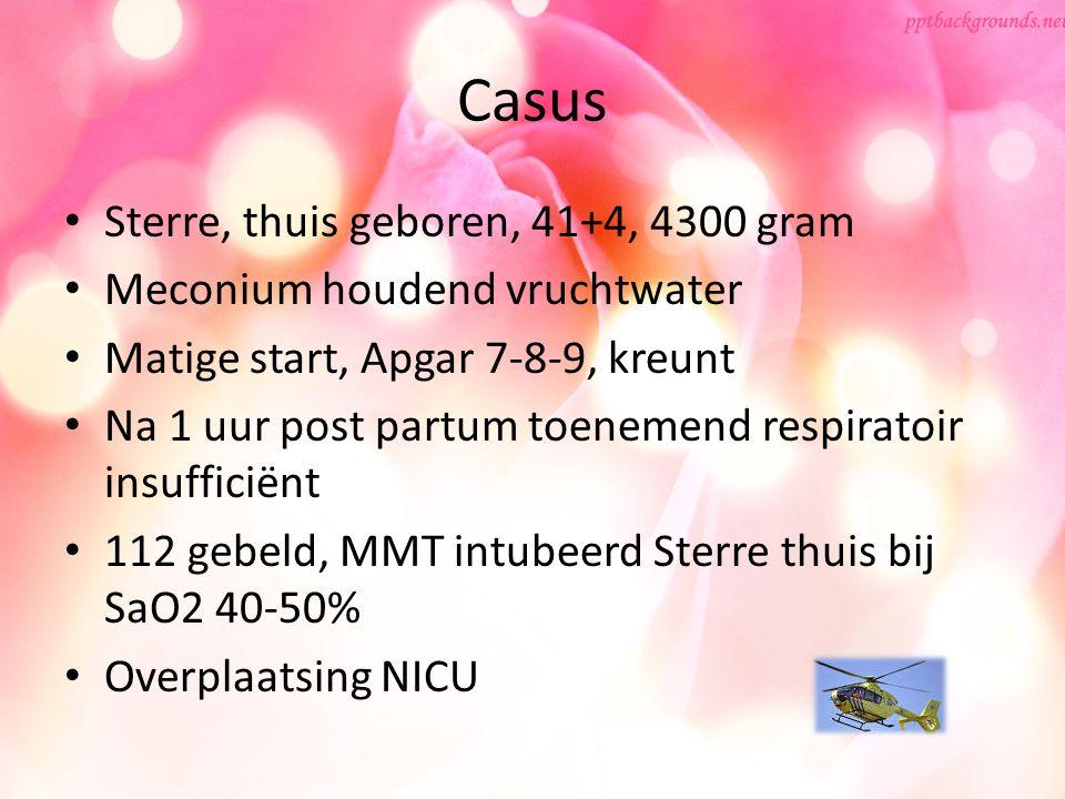 Casus Sterre, thuis geboren, 41+4, 4300 gram