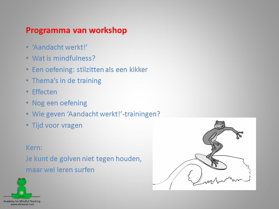 Programma van workshop