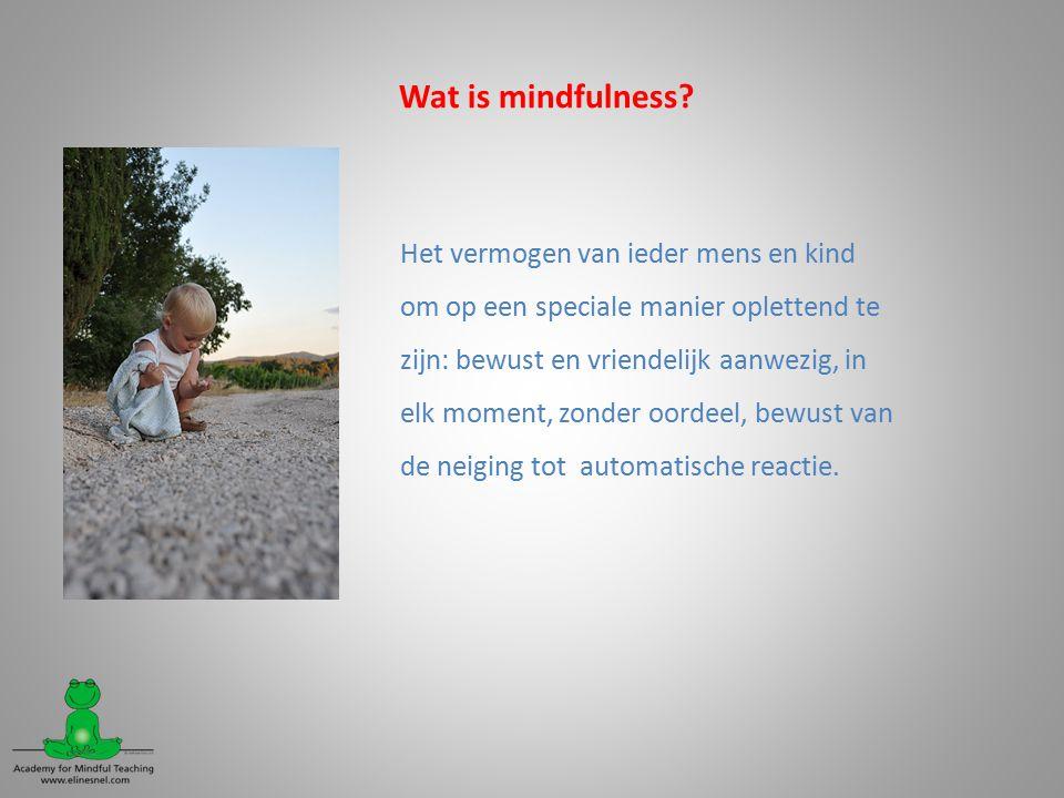 Wat is mindfulness Het vermogen van ieder mens en kind