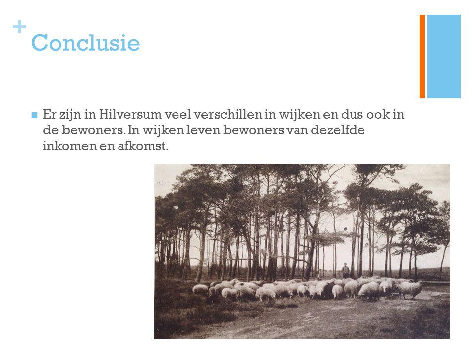 Conclusie Er zijn in Hilversum veel verschillen in wijken en dus ook in de bewoners.